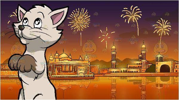 Diwali_Cat.jpg